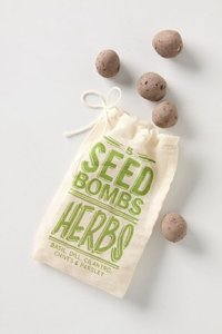 anthropologie seed bomb herbs