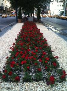 Park Ave Flowers
